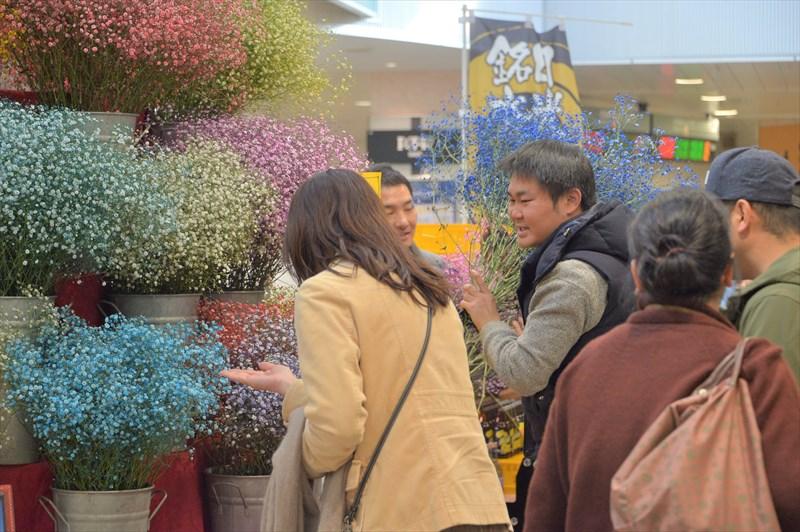 西船橋駅ロマンチックかすみ草